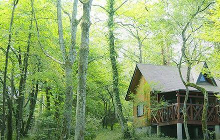 小田急山中湖森林度假木屋 image