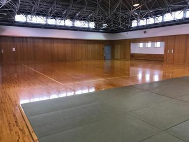 笛吹市いちのみや桃の里スポーツ公園 image