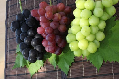 Shukuzawa Fruits Farm image