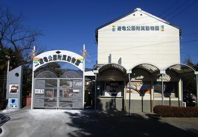 甲府市遊龜公園附屬動物園 image