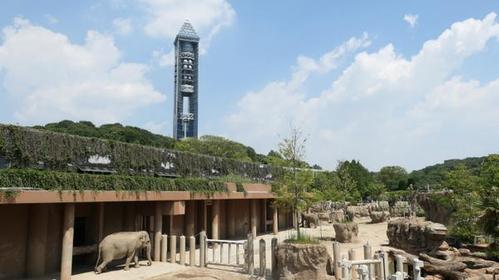东山SKY TOWER image