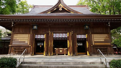 Wakamiya Hachimansha Shrine image