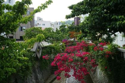 絲川步道 image