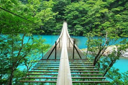 夢の吊橋 image