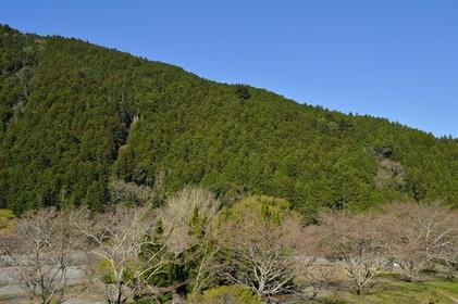 Mt. Akiha image