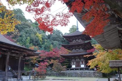 湖東三山 西明寺 image