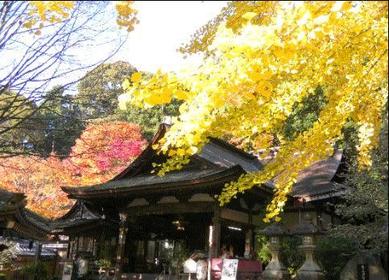 이와마산 쇼호지(이와마데라) 절 image