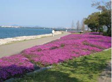 오쓰 호숫가 나기사 공원 image
