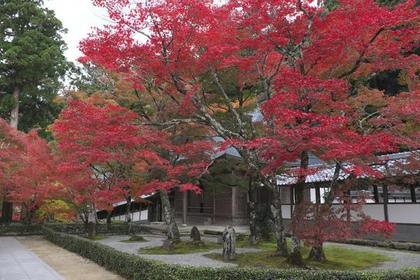 Eigenji Temple image