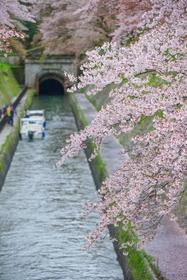 Lake Biwa Canal image