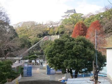 Wakayama Park Zoo image