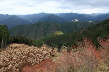 Mt. Gomadanzan image