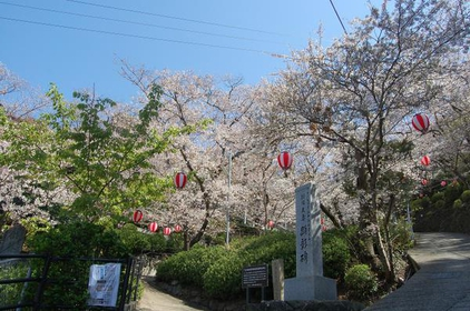 Ueno公園 image
