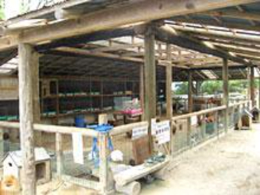 Shibukawa Zoo image
