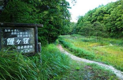 Koigakubo Marsh image