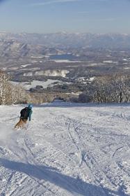 妙高 杉ノ原スキー場 image