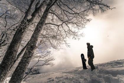 関温泉スキー場 image