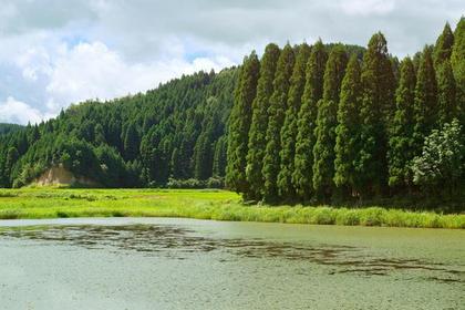 Kashibaru Marsh image