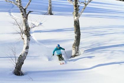 YABUHARA高原滑雪场 image