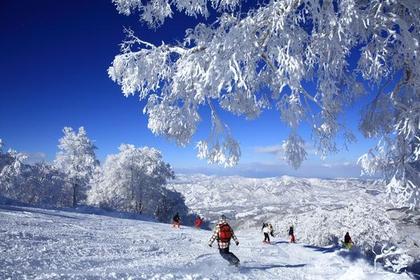 Nozawa Onsen Snow Resort image