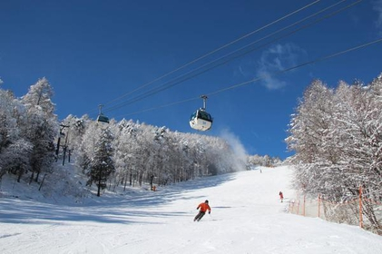 富士见全景度假村(滑雪场) image