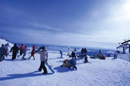豬苗代Resort滑雪場 image
