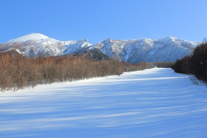 八幡平度假村观景滑雪场&下仓滑雪场 image