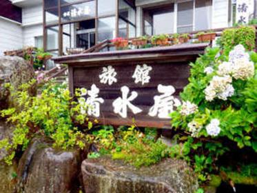 赤倉温泉 旅館 清水屋 image