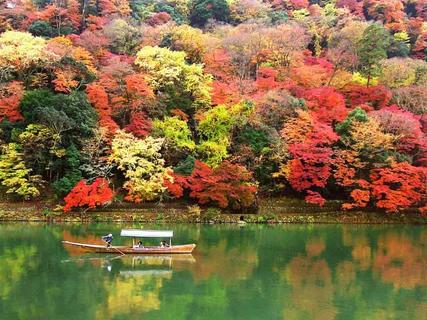 가을 단풍과 생동감 넘치는 전경