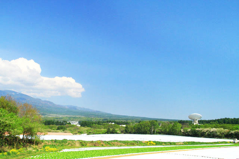 野辺山高原