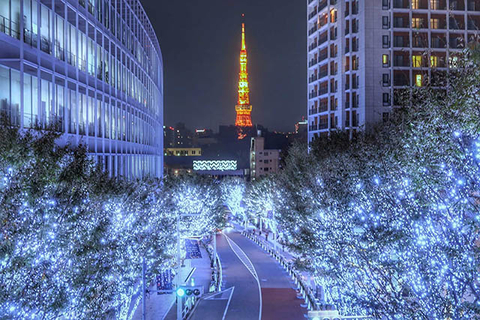 2019연말! 도쿄의 겨울밤을 수놓는 일루미네이션 특집!