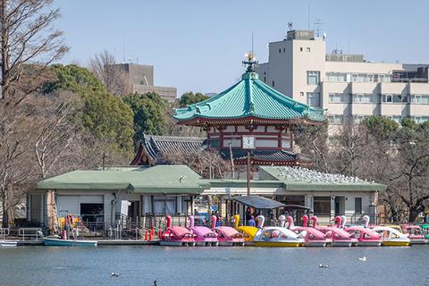 在上野可以做的17件事情