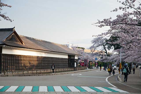 What to Do in Hikone