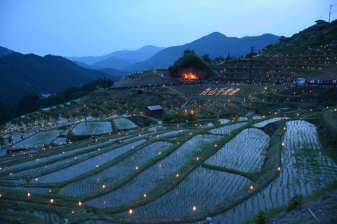 8 Beautiful Rice Terraces You Must See in Japan