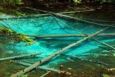 まるで絵画のような景色の「神の子池」