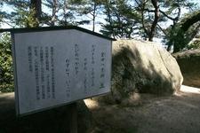 自然石に刻まれた文人の中にはきっと見覚えのある名前があるはず。