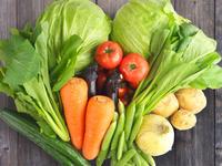 モスバーガーやシズラーも参加 野菜農家さんを応援しよう!