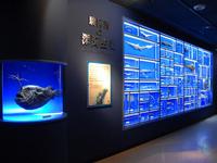東海大学海洋科学博物館・自然史博物館