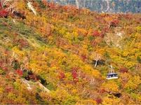 富山県立山