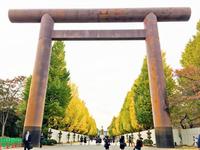 靖国神社のイチョウ並木