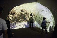 横浜市立金沢動物園  「ひかるどうぶつえん2016」