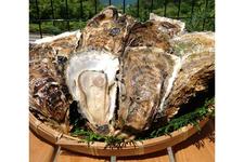 ぷりぷっりの牡蠣をいただける。