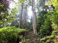 「熊野本宮」の聖地へと続く「熊野古道」は世界遺産にも選ばれています。