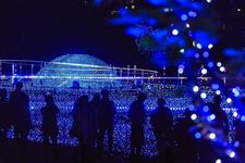 ミッドタウン・クリスマス2016 スターライトガーデン