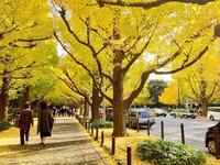 2018年秋の旅行に紅葉はマスト!関東の日帰りで行けるスポットを厳選しました