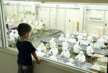工場見学のほかに、信玄餅などのお菓子詰め放題もできる「桔梗信玄餅テーマパーク」