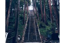 この287段もの石段「菩提梯」を登って「身延山久遠寺」へ。