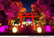 京都・チームラボ・アート・展示・インスタ映え・写真映え・フォトジェニック