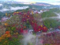 桜・新緑・紅葉・雪景色と四季の絶景を楽しめる「吉野」エリア。