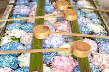 京都女子旅におすすめの観光スポット
